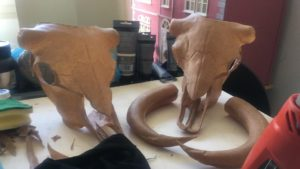 Creazione di crani di animali