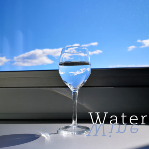 How important is water in the process of wine making? Graphics realized by Daniele Frau.